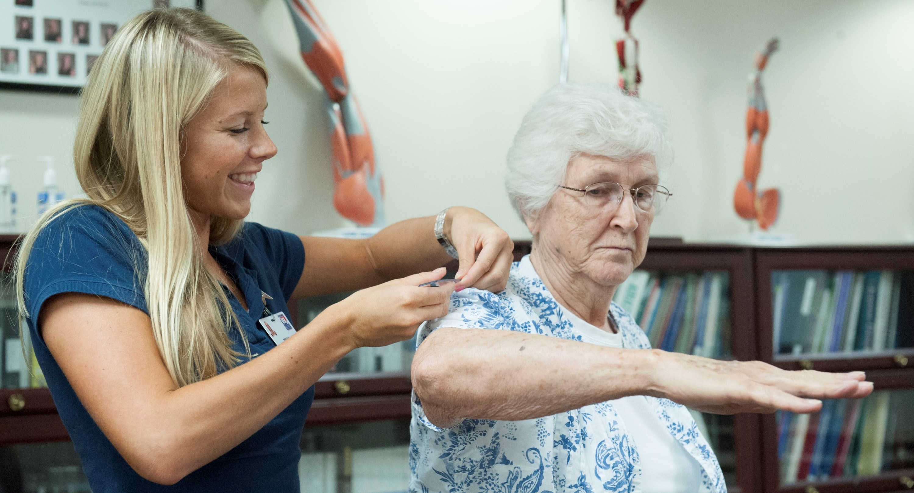 occupational therapy assistant program at university of southern, Human Body