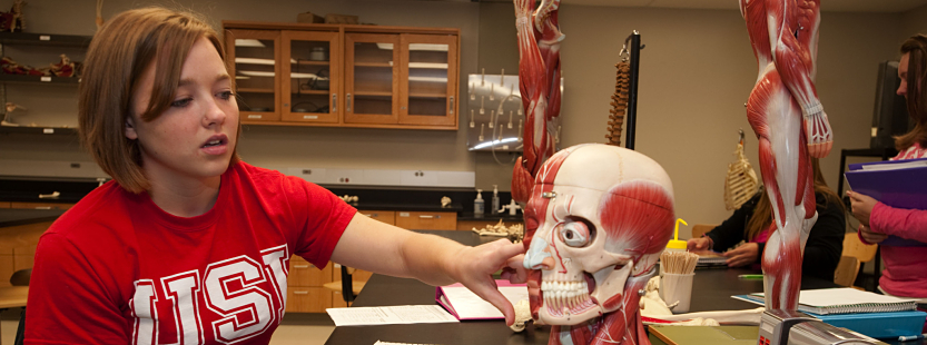 student learning about muscles in the human body
