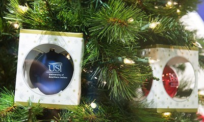 Don't forget to add a little USI holiday cheer to your tree this year.