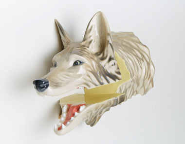 Canis latrans mount (yellow version)