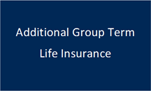 Additional Group Term Life Insurance