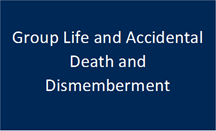 Group Life and Accidental Death and Dismemberment