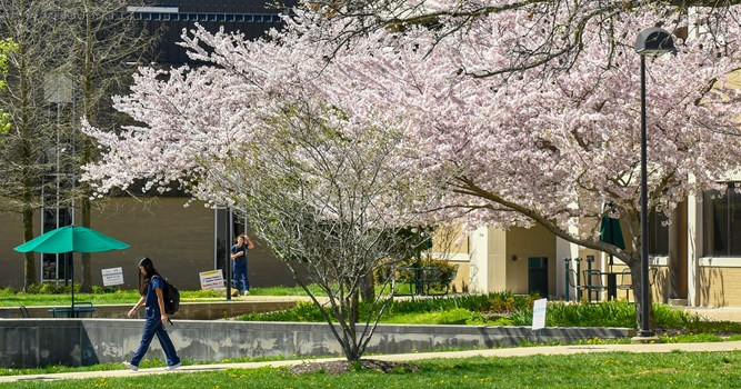 USI spring 2019 Dean's List celebrates achievements of nearly 2,100 students