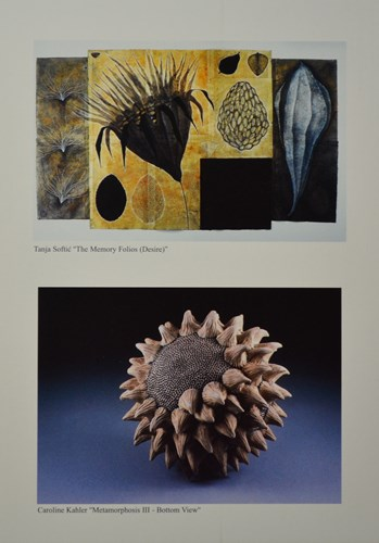 "Tanja Softic ""thr memory folios (desire)"" Caroline Kahler ""metamorphosis III - bottom view"""